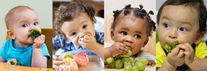 Curso Online Ao Vivo de Introdução Alimentar